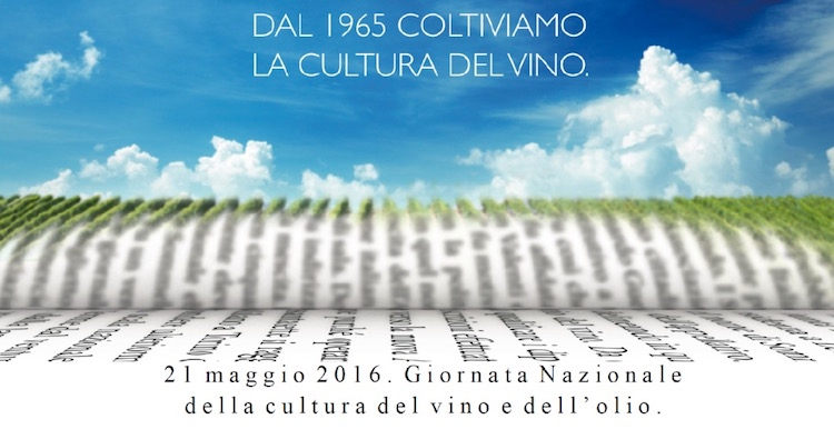 giornata-cultura-vino-olio-fonte-ais