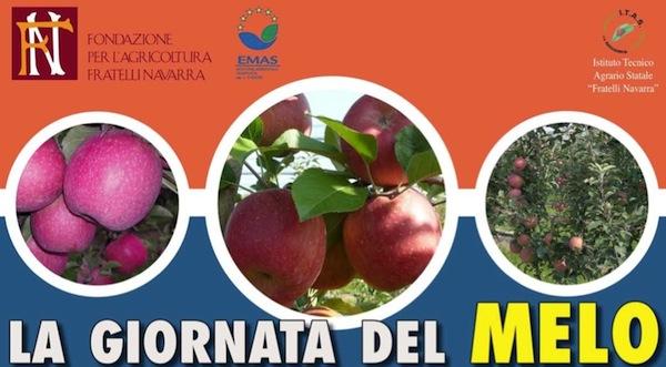 giornata-melo-navarra-2012