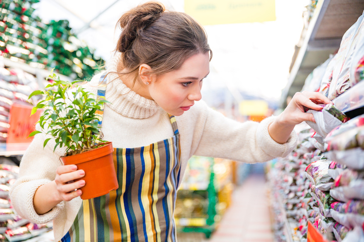 giovane-vendita-piante-fertilizzanti-by-drobot-dean-adobe-stock-750