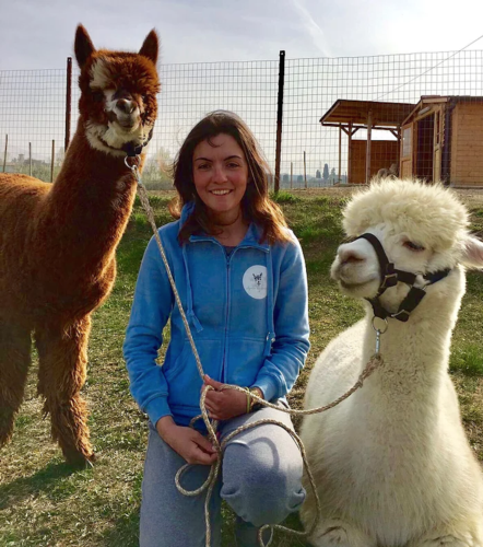 gloria-alpaca-coldiretti-oscar-green