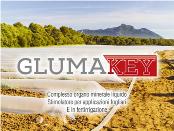 gluma-key-maggio-2017-fonte-euro-tsa