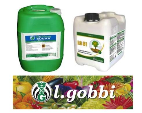 gobbi-biomass-lg81-2016