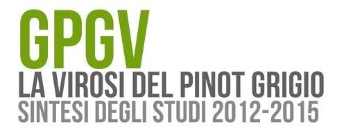 gpgv-convegno-fem-20160304.jpg