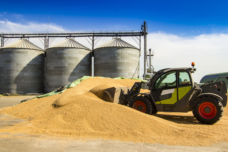 grano-silo-cereali-by-gratielaloredana-adobe-stock-750x500.jpeg