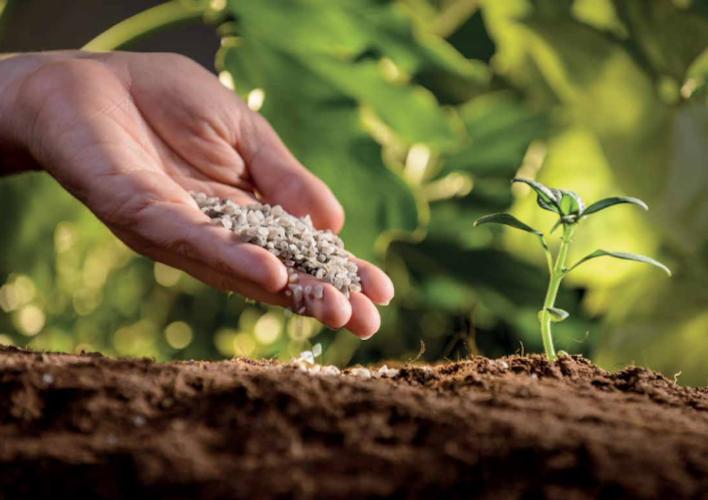 Polysulphate<sup>®</sup>: naturale ed ecologico, il concime leader del settore - le news di Fertilgest sui fertilizzanti