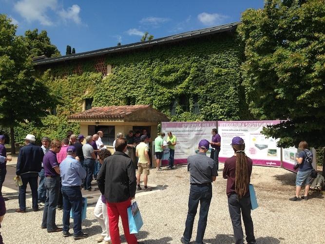 grape-field-tour-presentazione-agricoltura-sostenibile