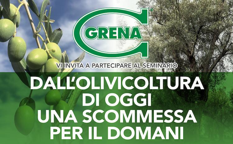 grena-olivicoltura-20191213