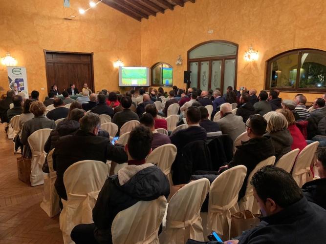 L'olivicoltura del domani parte da oggi - le news di Fertilgest sui fertilizzanti