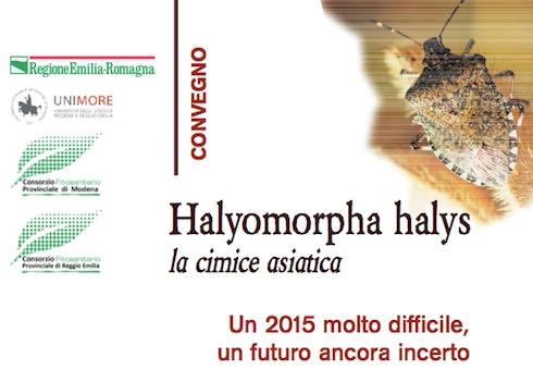 hyalomorpha-convegno-modena-2016