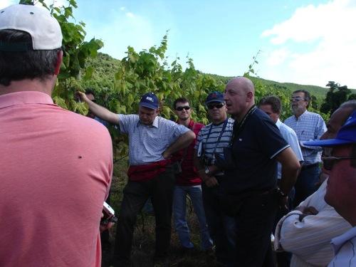 iasma-Consulenza-viticoltura-Brasile