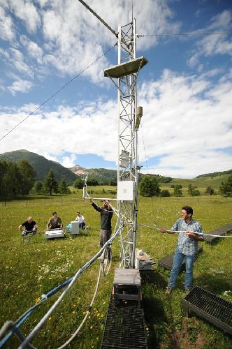 iasma-misurazione-fotosintesi-Torre