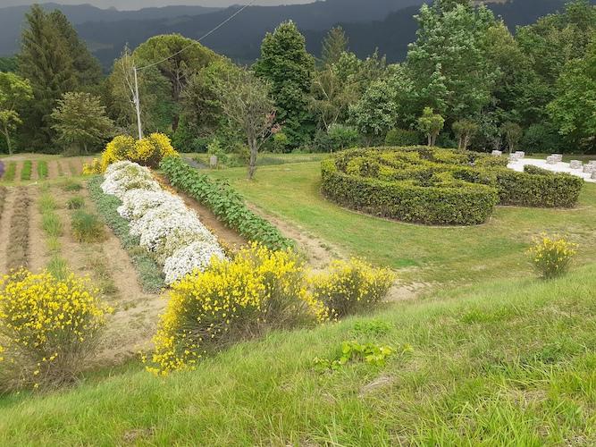 il-giardino-delle-erbe-sauro-biffi-pubblici-giardini-20210407