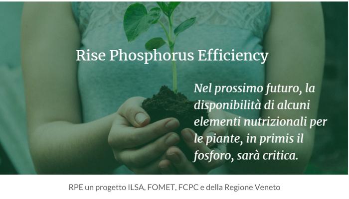 ilsa-progetto-riso-fcpc-fomet-regione-veneto-fonte-ilsa2