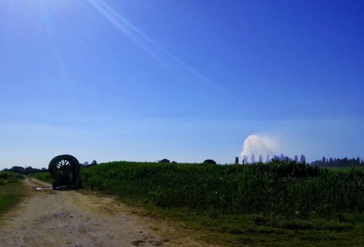 impianto-a-pioggia-irrigazione-mais-by-matteo-giusti-agronotizie-jpg