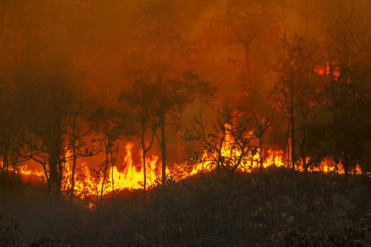 incendi-incendio-fuoco-by-toa555-adobe-stock-750x500.jpeg