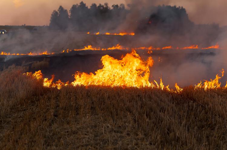 incendi-incendio-fuogo-by-olegmalyshev-fotolia-750