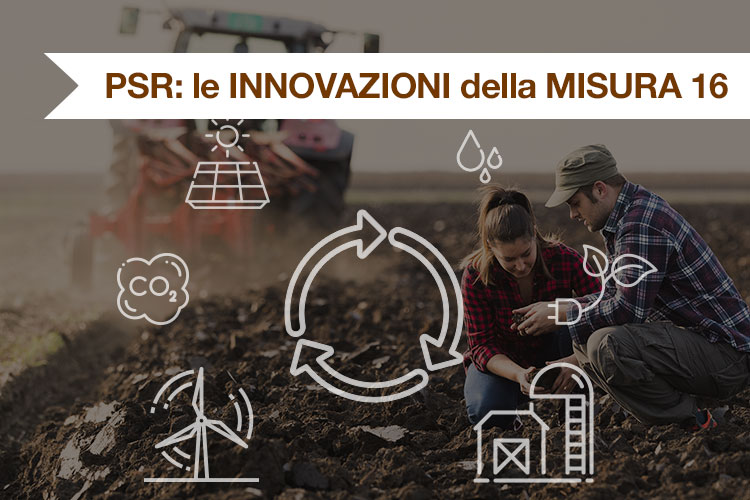 innovazioni-psr-foto.jpg