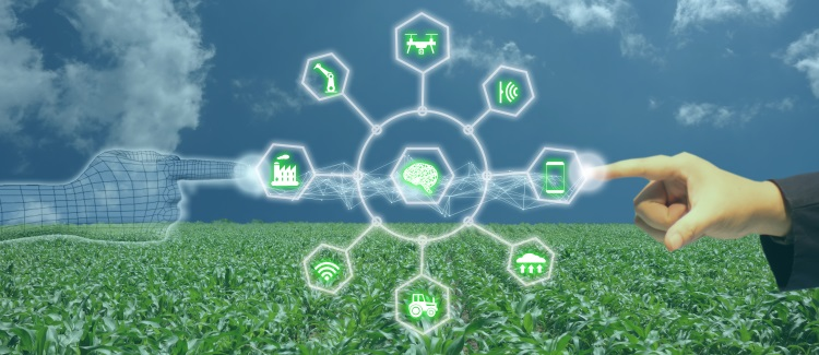 intelligenza-artificiale-tecnologia-internet-of-things-iot-by-monopoly919-adobe-stock-750x325