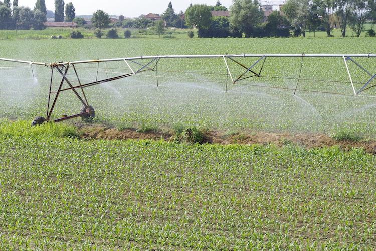 irrigazione-ala-fonte-acquafert-agri