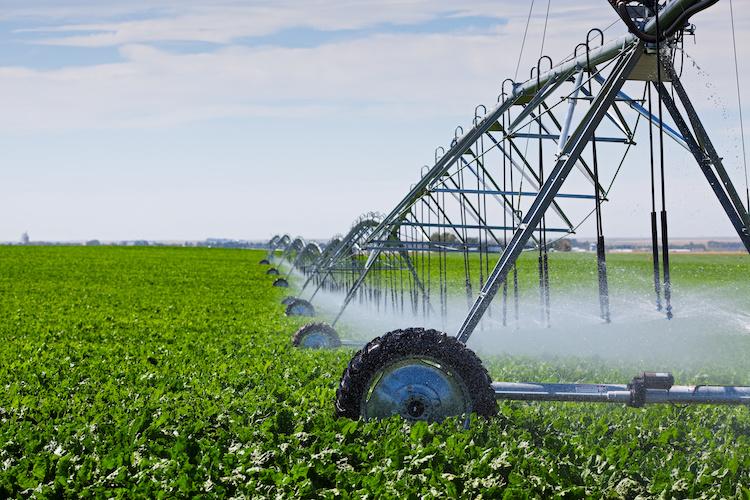irrigazione-campo-by-brenda-carson-adobe-stock-750x500