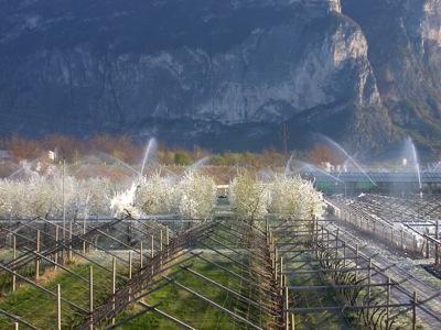 irrigazione-iasma