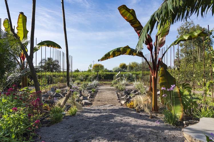 irritec-radicepura-garden-festival