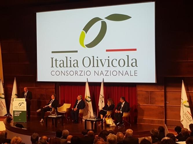 italia-olivicola-presentazione09ott2018mimmo-pelagalli-per-agronotizie