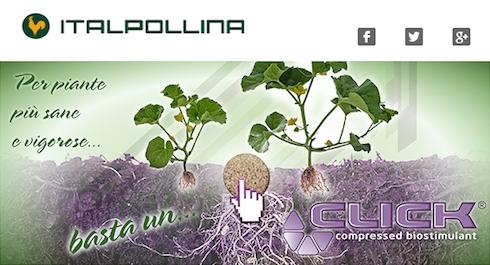 italpollina-biostimolanti-pastiglia.jpg