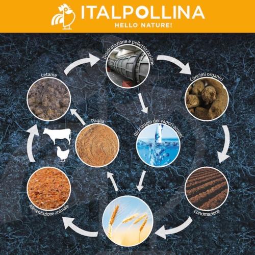 italpollina-economia-circolare-20181126-fonte-italpollina.jpg