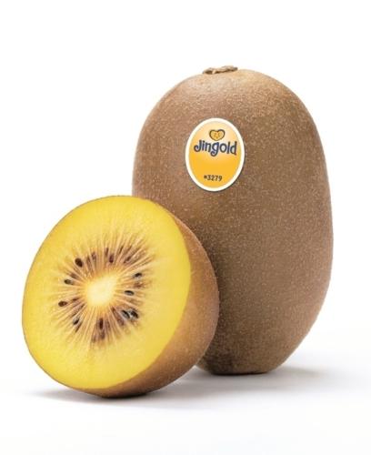 jingold-kiwi-apertobollo