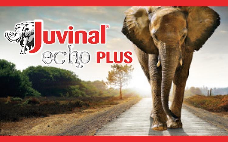 juvinal-echo-plus-sumitomo-20160309.jpg