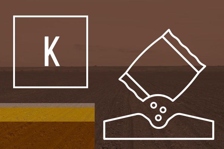 k-potassio-ciclo-art-tommaso-c-su-concimi-npk-dic-2020-fonte-agronotizie