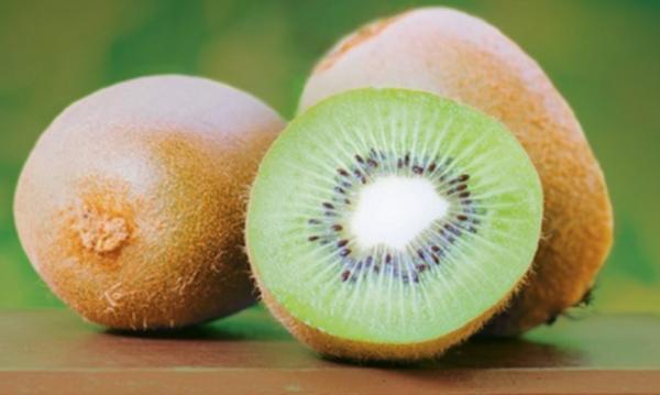 kiwi-fonte-syngenta