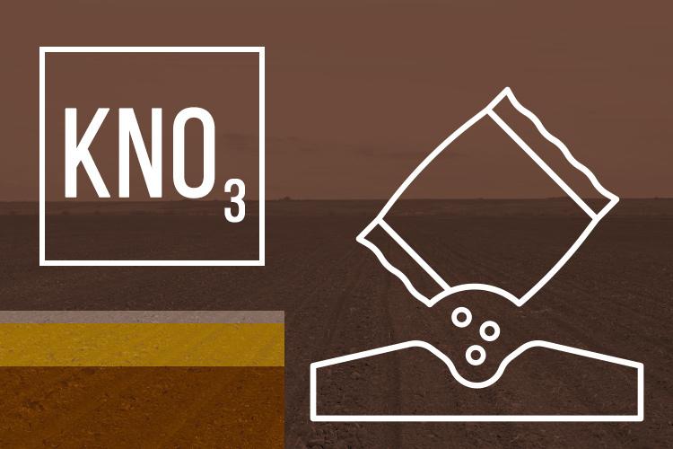 kno3-nitrato-di-potassio-ciclo-art-tommaso-c-concimi-npk-dic-2020