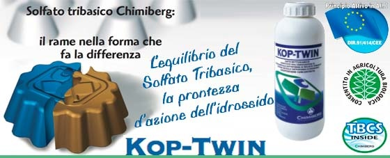kop twin chimiberg