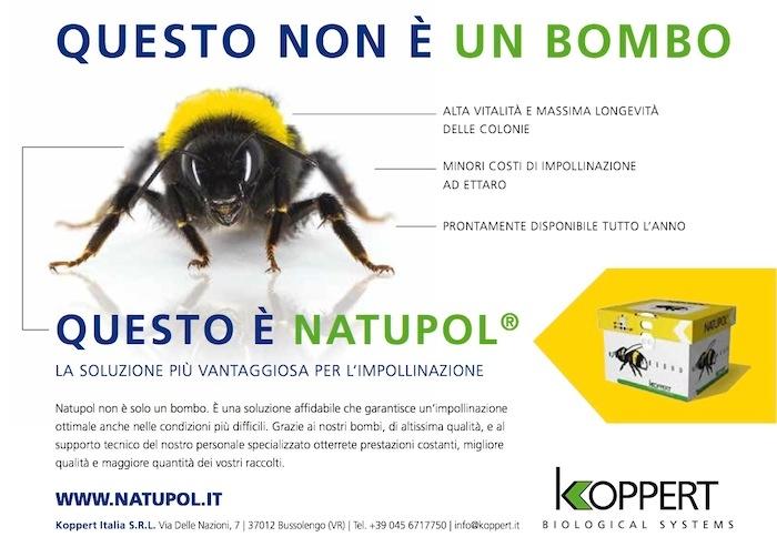 koppert-natupol-sito