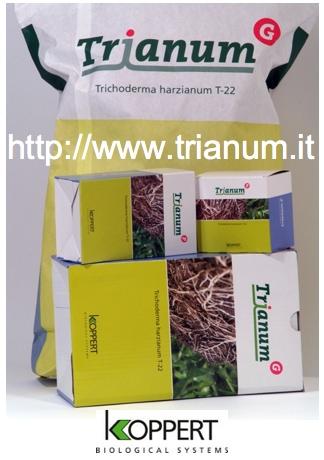 koppert-trianum-sito-web