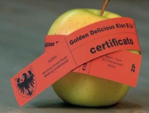 ksb_mela_certificazione_20081024.jpg