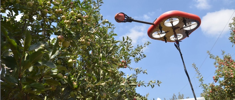 kubota-tevel-robot-frutticoltura