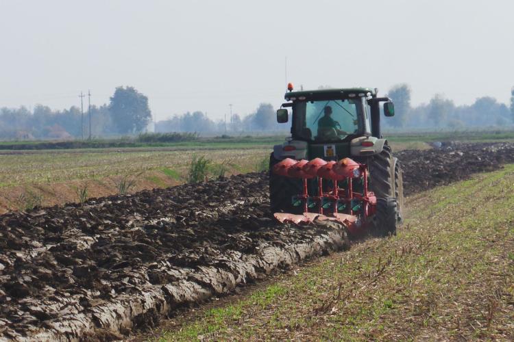 Agricoltura di precisione, un bilancio costi-ricavi sul mais da granella