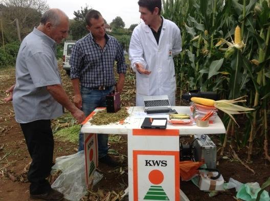 kws-analisi-laboratorio-in-campo-mais