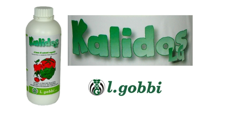 l-gobbi-kalidos-2019