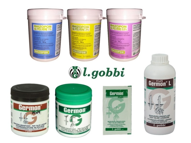 l-gobbi-rhizopon-germon.jpg