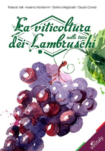 la-viticoltura-nelle-terre-dei-lambruschi-copertina.jpg