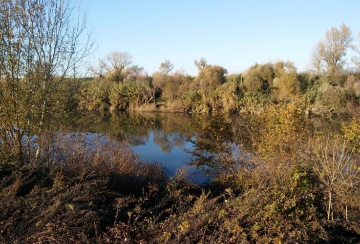 laghetto-invaso-irrigazione-by-matteo-giusti-agronotizie-jpg