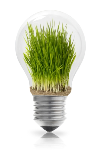 lampadina-ambiente-idee-green-innovazione-sostenibilita-by-goir-fotolia.jpg