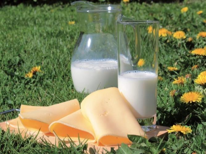 latte-formaggio-ott-2018-allevatori-top.jpg