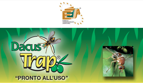 lea-dacus-trap