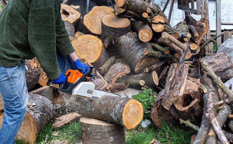 legna-tagliata-legname-legno-contadino-taglia-legna-by-serz72-adobe-stock-750x465