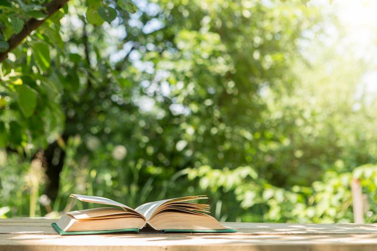 libro-aperto-summer-school-scuole-estive-studio-giardino-alberi-by-sensay-adobe-stock-750x500